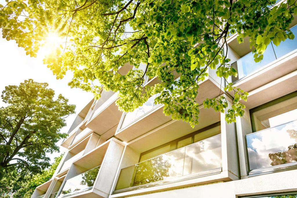 Green Building - modernes Gebäude von Bäumen umgeben